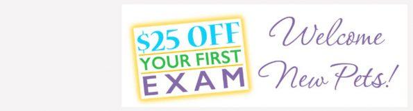 $25 first exam advertisement