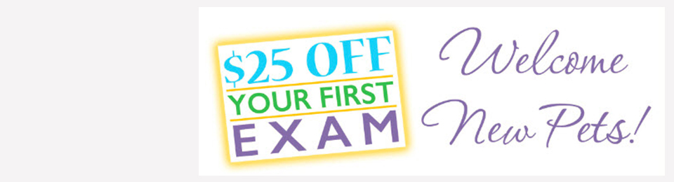 $25 first exam advertisement