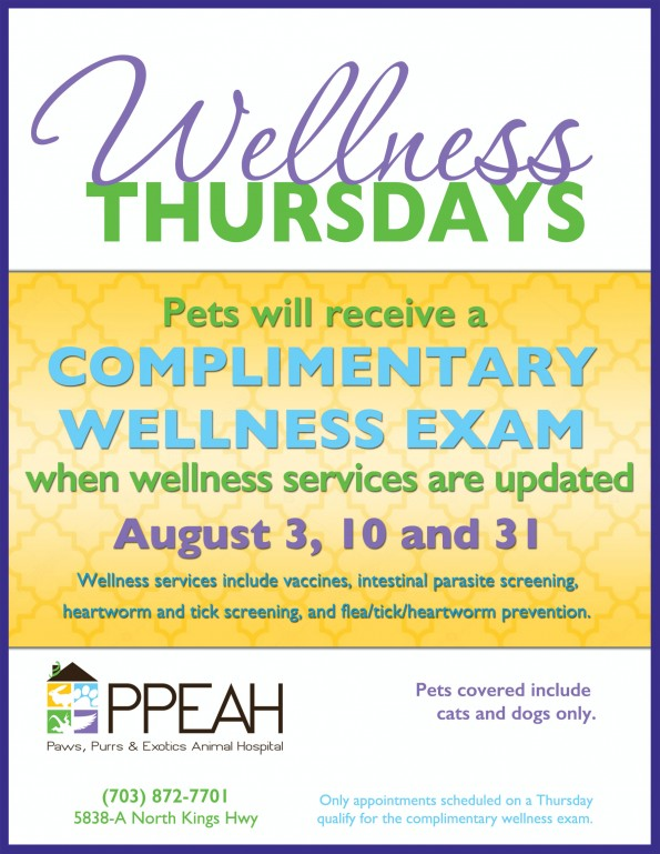 WellnessThursdays_Flyer_email
